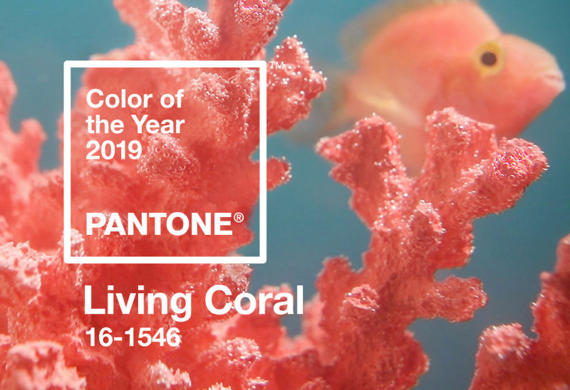 The 2019 Pantone Colour of the Year is Living Coral